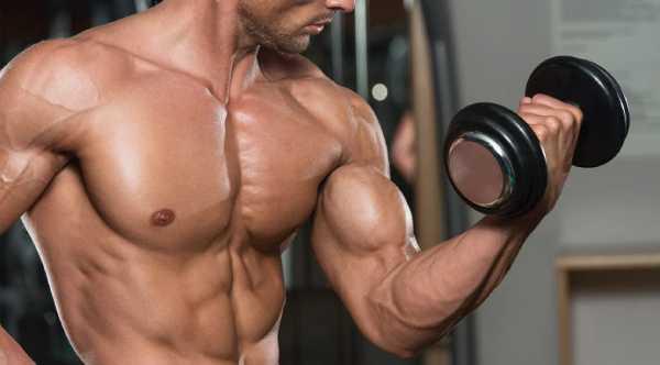 Beste oefeningen voor je biceps